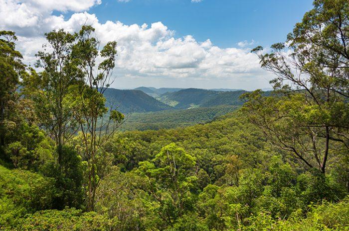 Lamington National Park, Queensland