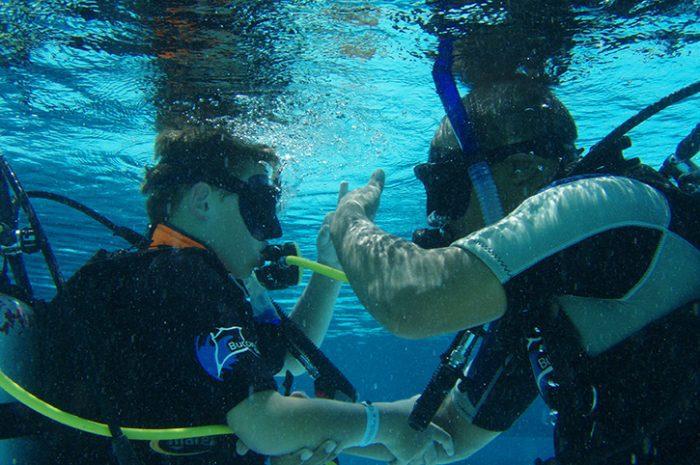 Local Padi Diving Training