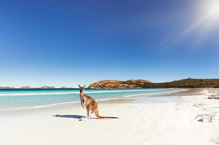 Lucky Bay, Esperance, Western Australia
