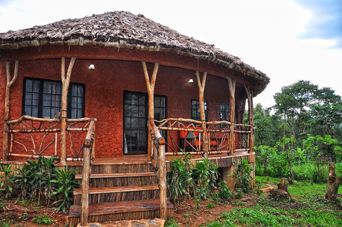 Mahogany Springs Lodge bungalow