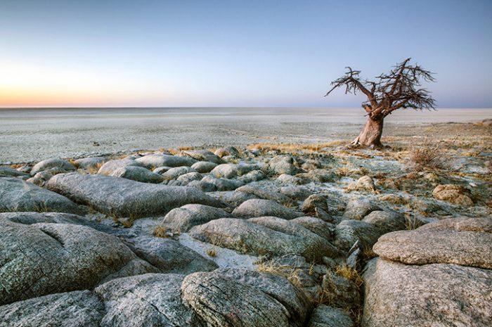Makgadikadi Pans, Botswana