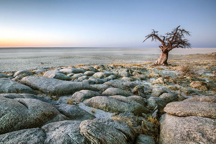 Makgadikadi salt pans Botswana