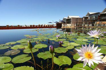 Mantarays Ningaloo Resort Lilly Pond