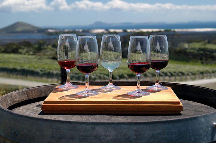 Marlborough Wine Tasting