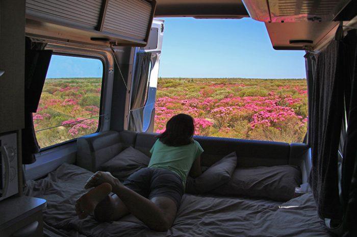 Maui Ultima Plus Bed