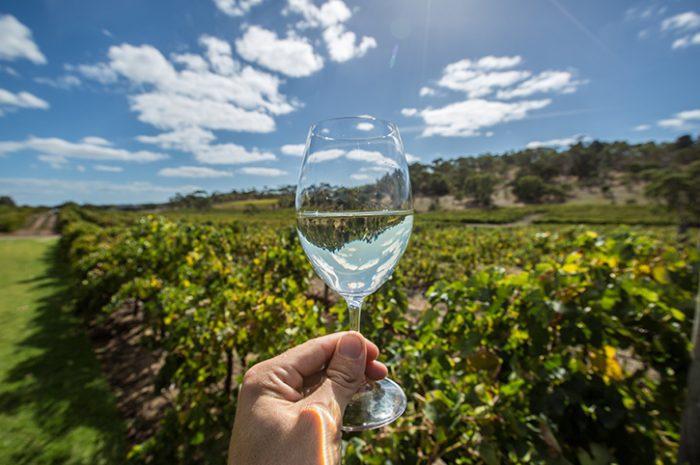 McLaren Vale Winery, South Australia