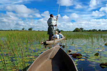 Mokoro Boat Ride, Botswana