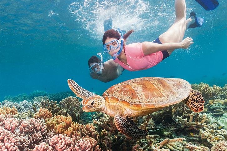 Snorkelling on Moore Reef
