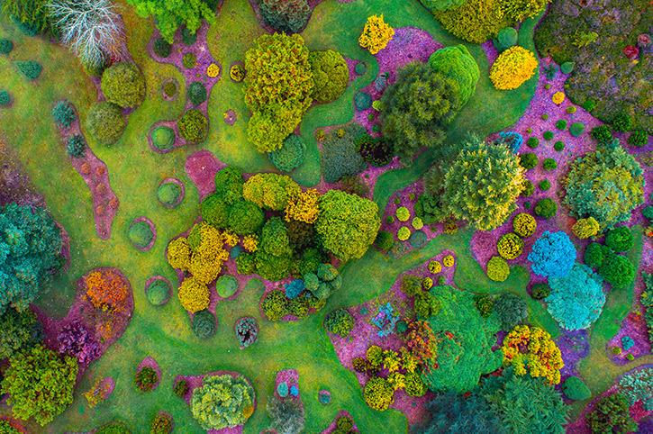 Mount Lofty Botanic Garden, Adelaide Hills