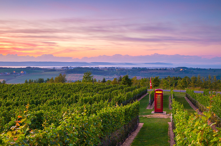 Luckett Vineyards, Nova Scotia, Canada