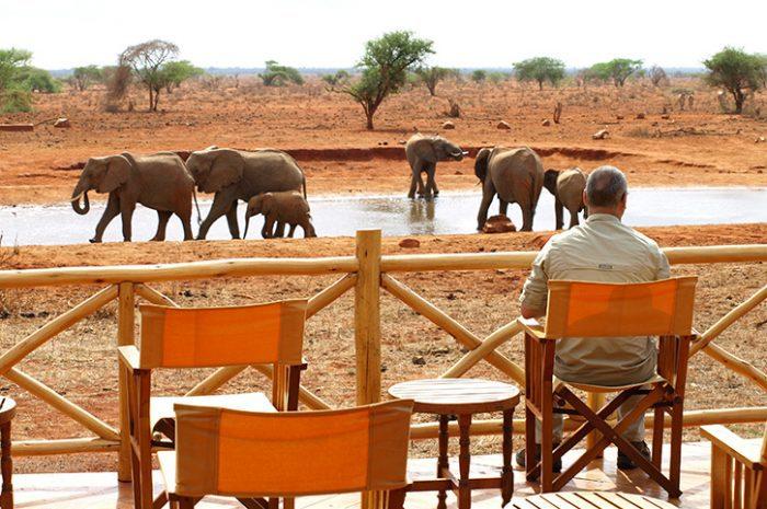 Ngutuni Safari Lodge Waterhole Views