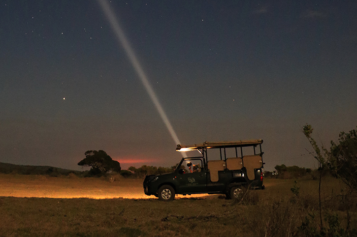 Night drive, Garden Route Game Lodge