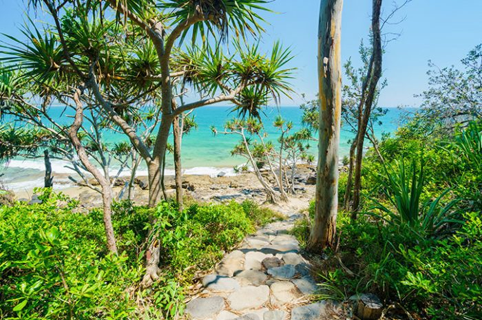 Noosa National Park, Queensland
