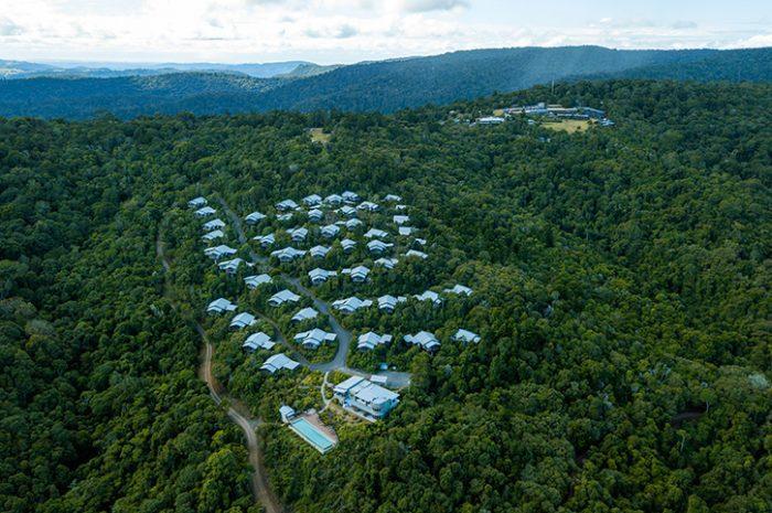 O'Reillys Rainforest Retreat Aerial