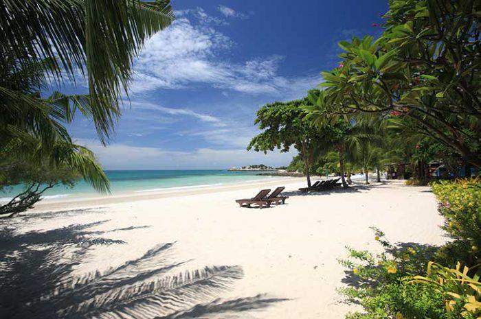 Paradee Beach