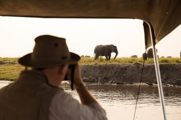 Photographing elephants at Chobe River, Chobe National Park
