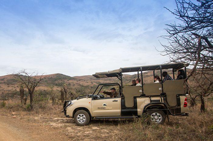 Rhino Ridge Game Drive