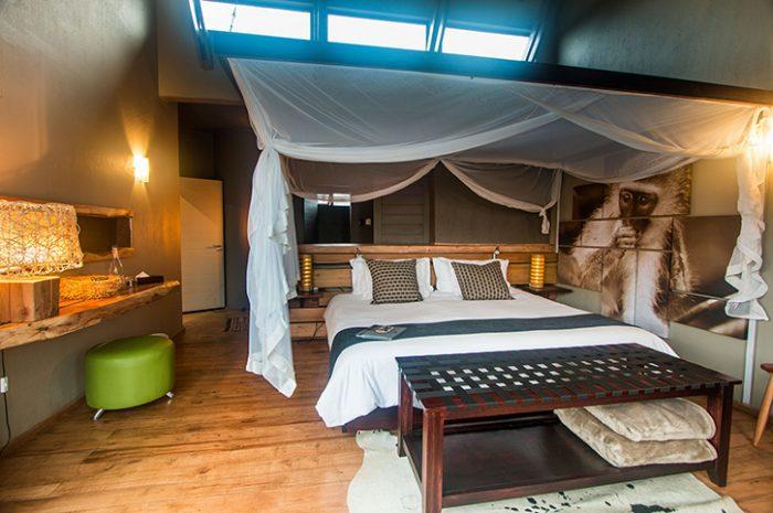 Rhino Ridge Safari Room