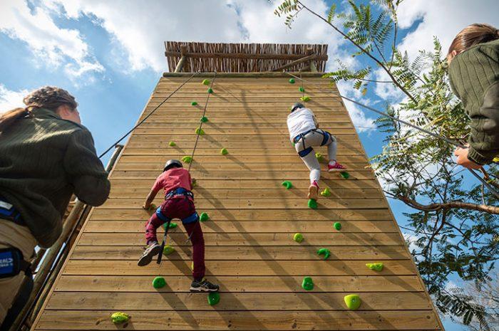 Riverdene climbing wall
