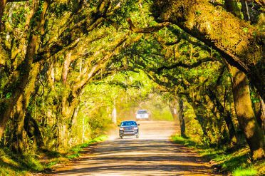 Road trip, South Carolina