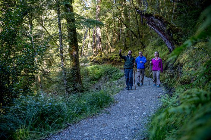 Routeburn Track Group