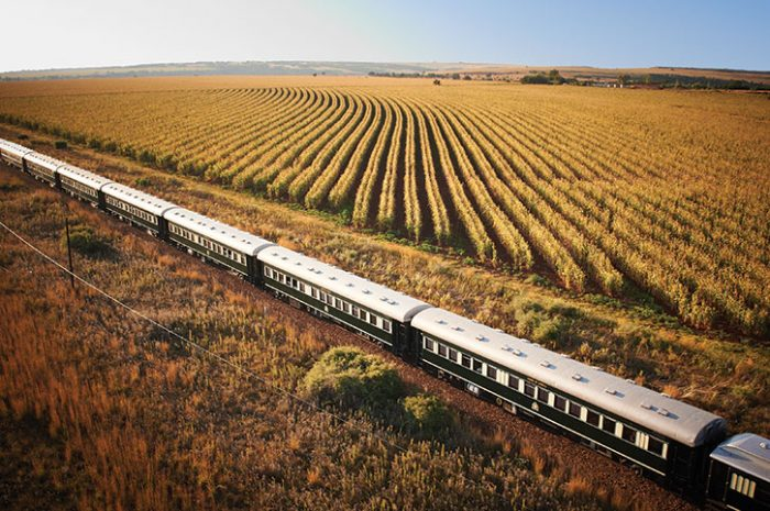Rovos Rail in North West Province