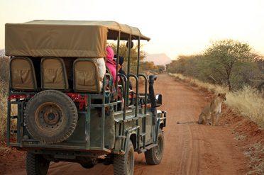 Safari in Etosha National Park, Namibia