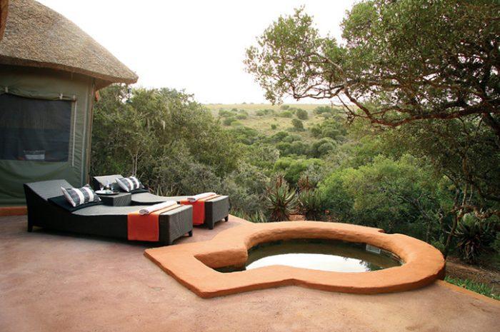 Safari Lodge Private Plunge Pool