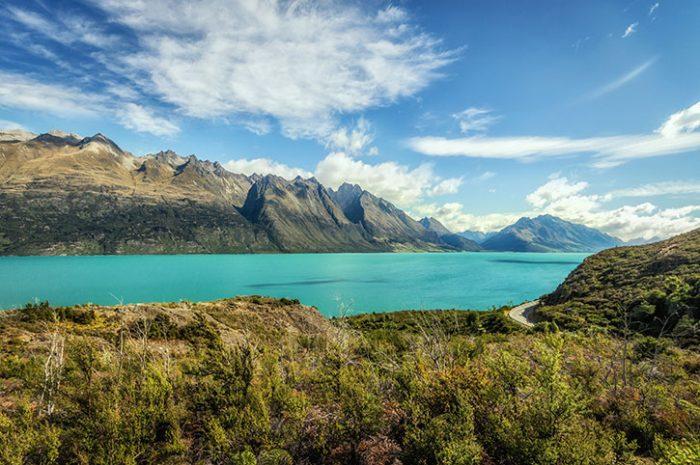Safari Of The Scenes Lake Views