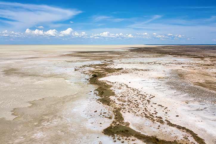 Salt Pan, Etosha, Namibia