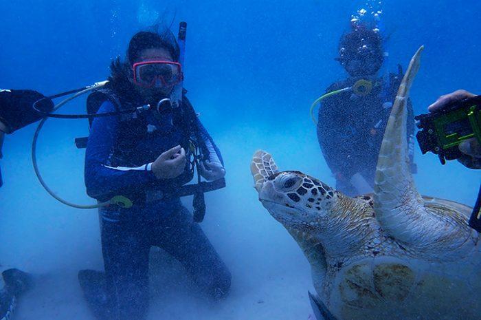 Scuba Diving Redang