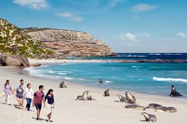 Seal Bay Conservation Park, Kangaroo Island