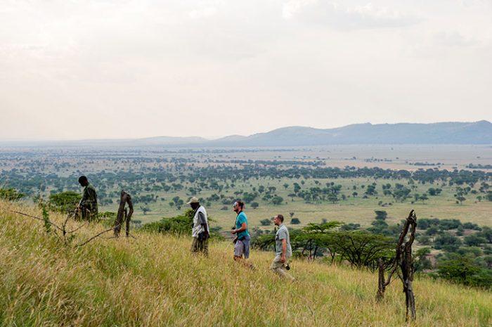 Serengeti Serena Nature Walk