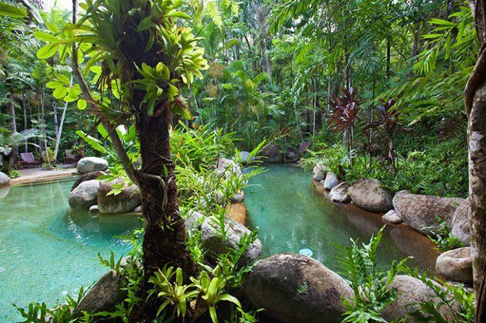 Silky Oaks Lodge Pool