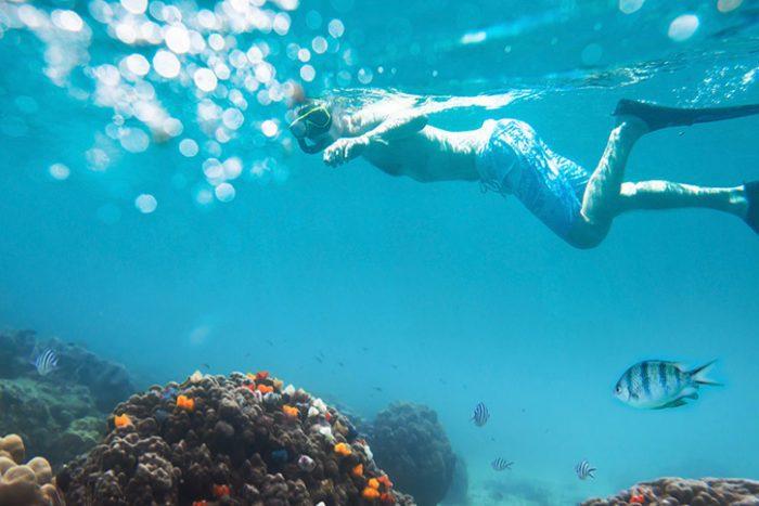 Snorkel Trip
