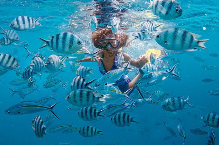 Snorkelling, Fiji