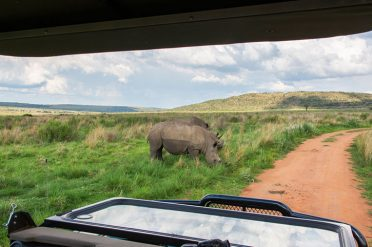 Spotting Rhino, South Africa