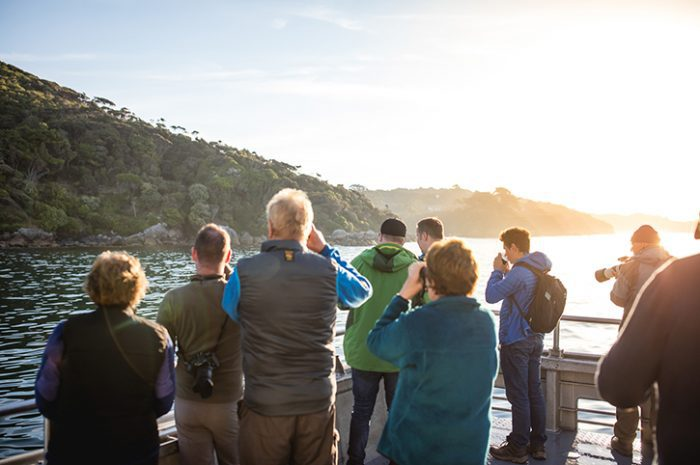 Stewart Island Group Tour