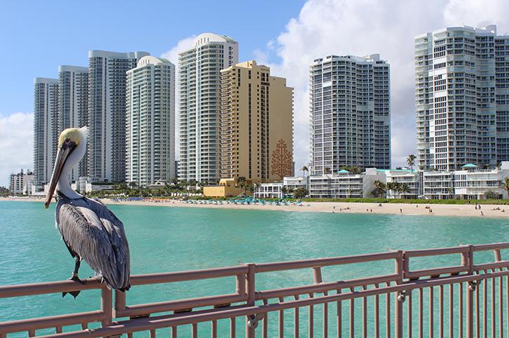 Sunny Isles Beach, Florida, USA