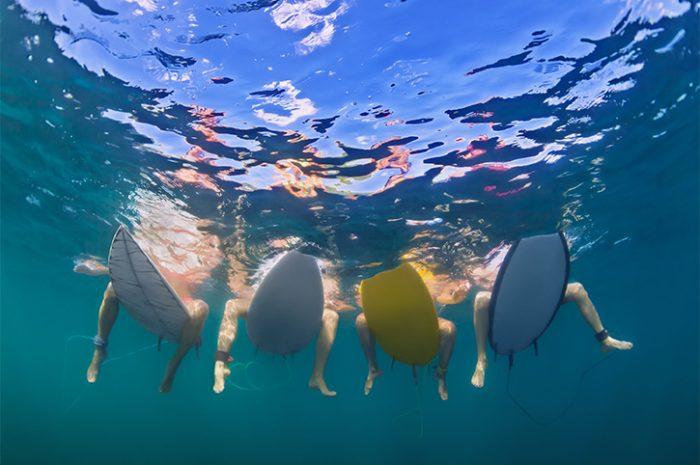 Surfing, Big Island, Hawaii