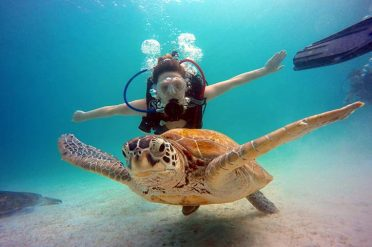Taaras Beach Resort Turtle Dive