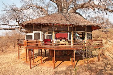 Tarangire Treetops Room