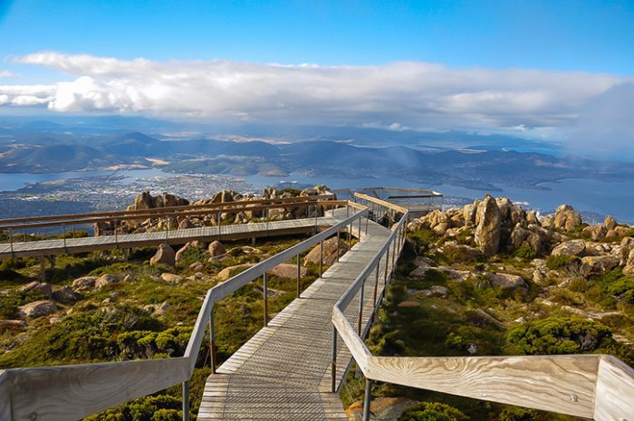 Boardwalk in Tasmania