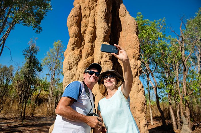 Termite Mound, Litchfield National Park