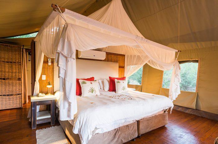 Thakadu River Camp Standard Tent