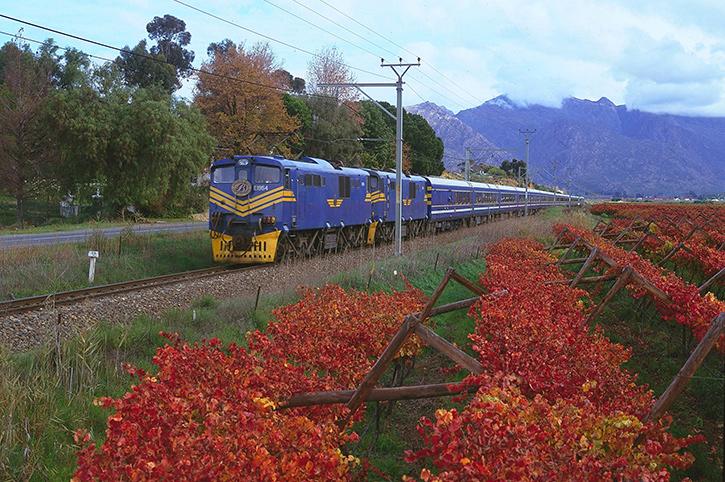The Blue Train, Winelands