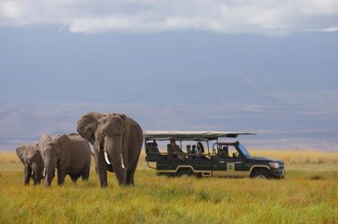 Game drive, Amboseli National Park