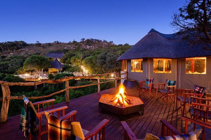 Treetops Safari Lodge Fire Pit