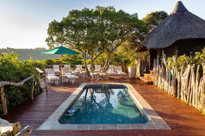 Treetops Safari Lodge Main Pool