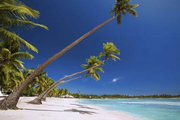 Tropical Lagoon In Fiji